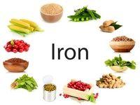 گیاهانی از جنس آهن!