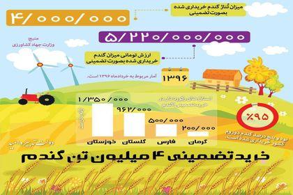 خریدتضمینی ۴میلیون تن گندم توسط دولت یازدهم +اینفوگرافیک