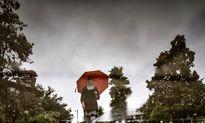 میزان بارندگی در ایران کمتر از ۳۰درصد متوسط دنیاست