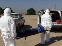 مرگ یک دامدار بر اثر ابتلا به «تب کریمه کنگو»