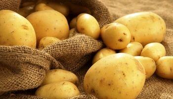 قیمت سیبزمینی تا هفته آینده کاهش مییابد