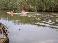 تالاب بینالمللی انزلی در آستانه خشک شدن! +عکس
