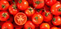 استفاده از گوجه فرنگی به جای طلا و جواهرات عروسی +عکس
