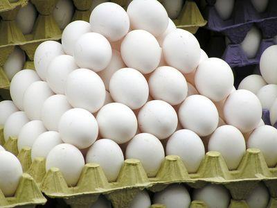 ۱۳ درصد؛ افزایش قیمت تخم مرغ در یکسال اخیر