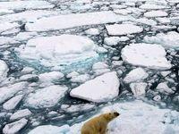 شرایط بحرانی قطب شمال به سبب تغییرات اقلیمی