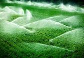 تجهیز ۱۴۰هزار هکتار از اراضی آبی کشاورزی به سامانه نوین/ پیشبینی ۳۱۱۷میلیارد تومان اعتبار برای توسعه سامانه نوین آبیاری