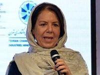 راهکاری برای بازگشت سرمایهگذاران ایرانی خارج از کشور