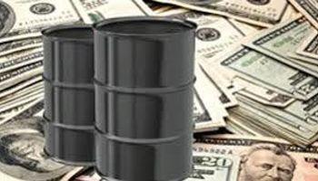 درآمد شرکت ملی نفت ، گاز و پتروشیمیها شفافسازی شود