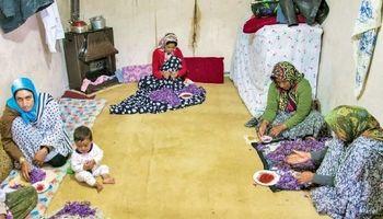 موانع اشتغالزایی برای زنان روستایی