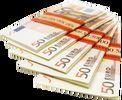 ۱۰ هزار یورو؛ حداکثر ارز مجاز همراه مسافر