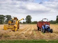 کاهش ۱۵درصدی بودجه بخشهای مختلف کشاورزی/ بودجه کشاورزی متناسب با نقش آن نیست