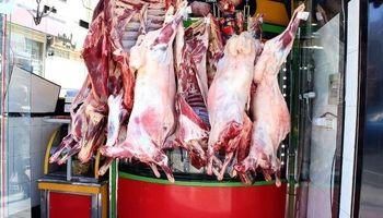 نصف افزایش قیمت گوشت قرمز در بازار به دلیل قاچاق دام زنده است