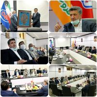 آمادگی بانک صادرات ایران برای حمایت از شرکت لبنیاتی «میهن»