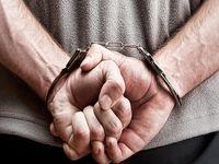 «سلطان فولاد» دستگیر و به کشور بازگردانده شد