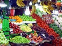 احتمال از بین رفتن ۱۲۲کانتینر میوه و سبزی