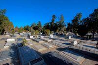 قبر متری چند؟
