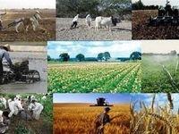 ۷۲واحد تعطیل حوزه کشاورزی استان تهران فعال شد
