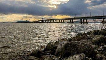 موجود عجیب دریاچه ارومیه شناخته شد