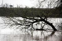 خسارت ۳۱۰میلیارد ریالی سیلاب در خواف