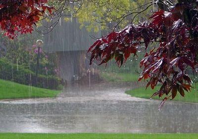 فعال شدن سامانه بارشی جدید از شنبه