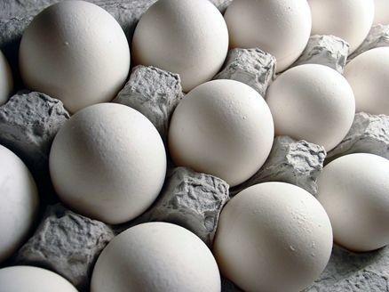 تولید تخممرغ به اندازه نیاز داخلی است