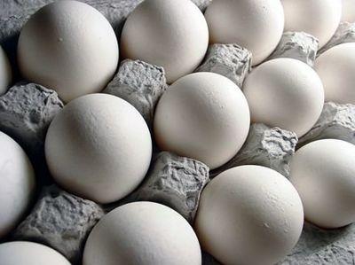 جمع آوری ۲۰۰میلیون تخم مرغ سمی از بازار آمریکا