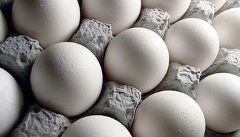 صنعت تخم مرغ کشور به حالت عادی برگشته است