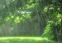 هشدار سیلاب ناگهانی و صاعقه در ۱۲استان