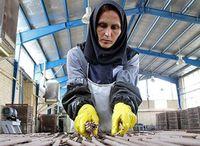 ۲۵درصد اعضای تعاونیهای فعال، زنان هستند