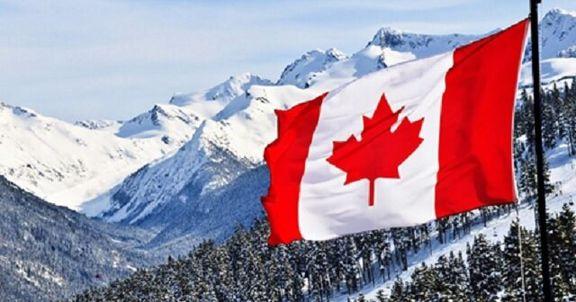مدیر اقتصادی کانادایی: خودشیفتگی منجر به فاجعه هواپیما شد