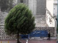 تهرانیها منتظر وزش باد شدید باشند