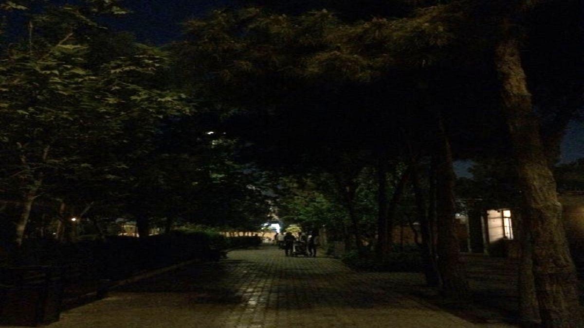 ماجرای خاموشی بوستانهای پایتخت