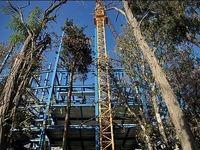 چه زمانی لغو مصوبه برج باغ به شهرداری ارسال میشود؟