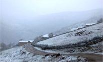 بارش برف پاییزی در گیلان +تصاویر