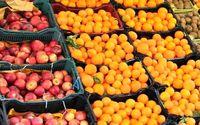قیمت گوجه یکماهه ۵۵.۵درصد افزایش یافت