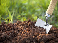 نقشه خاکهای زراعی و باغی ظرف مدت پنج سال تهیه میشود/ بانک ملی اطلاعات خاک تشکیل میشود