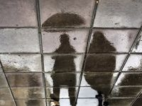 بارش باران و وزش باد شدید در انتظار ۶ استان