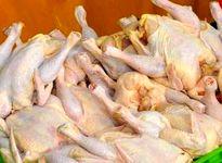 قیمت مرغ  به کیلویی ۹۰۰۰تومان رسید