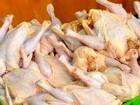 گرانفروشی مرغ ۳۶۲۵تومان بالاتر از نرخ مصوب