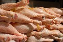 قیمت هر کیلو مرغ گرم ۱۹هزار و ۵۰۰تومان شد