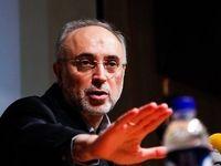 صالحی: ایران در زمینههای هستهای قادر به «طراحی» است