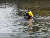 پاکسازی دریاچه آزادی +عکس