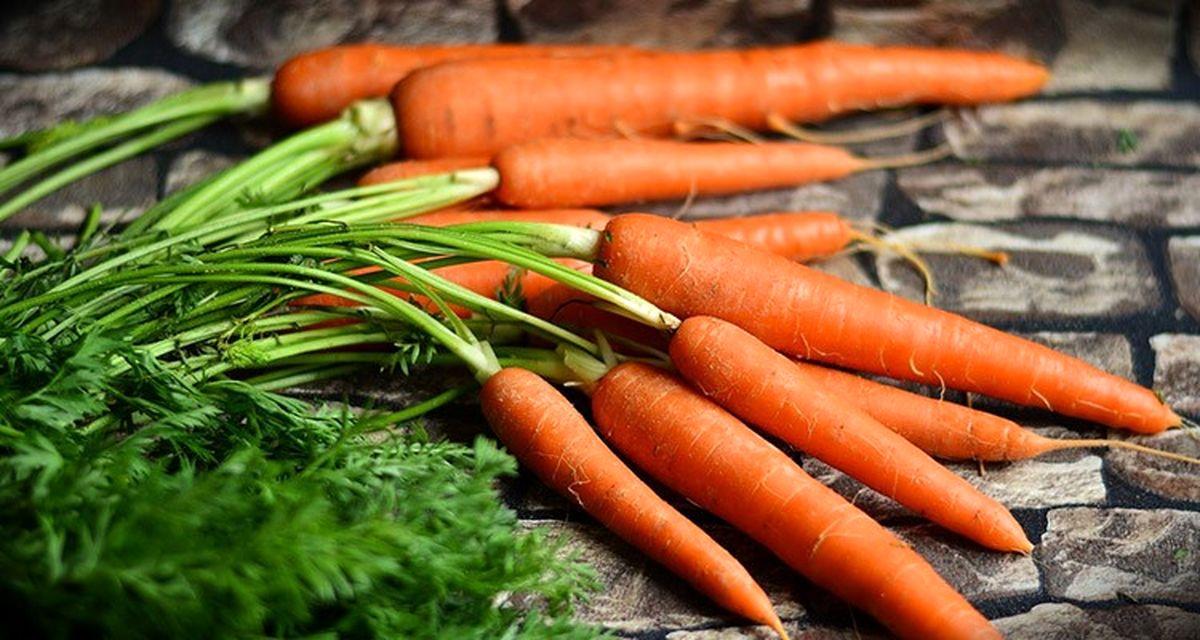 تولید ۲۶۰هزار تن هویج در تابستان