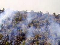 آتش سوزی کوه خاییز +تصاویر