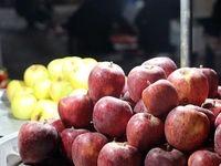 ذخیره سیب تنظیم بازار شب عید 3برابر بیشتر از سال گذشته/ آبیاری 32هزارهکتار از اراضی جنوب تهران با آب نامتعارف