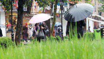 بارش باران تابستانی در رشت +تصاویر