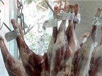 قاچاق دام در روز روشن؛ گوشت در سفره کارگر جایی ندارد