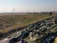 رده سنی جانباختگان حادثه هواپیمای اوکراینی