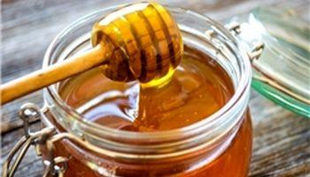 عسلشناسی به سبک زنبورداران