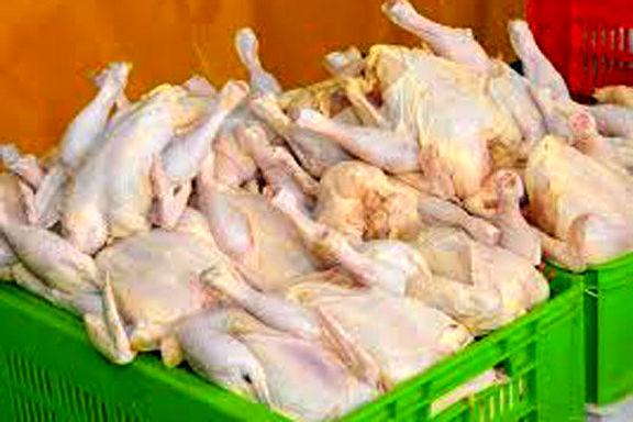 نرخ جدید مرغ به ۷۷۰۰ تومان رسید